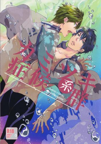 kamitsuki kei shoukougun cover