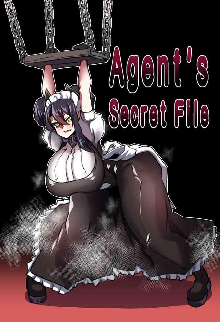 agent x27 s secret file cover